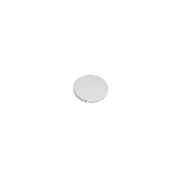 Supermagnet disc 13x1 mm.
